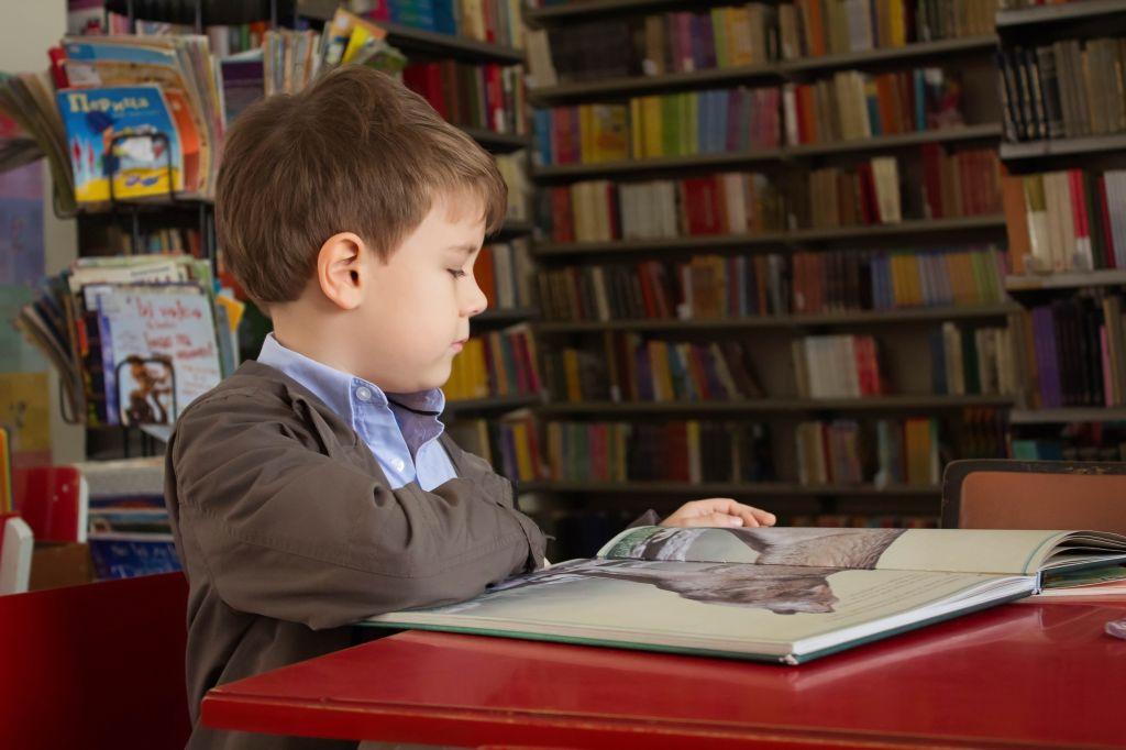 Educação Infantil Lapa
